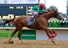 "Kentucky Derby winner Animal Kingdom<br><a target=""blank"" href=""http://www.bloodhorse.com/horse-racing/photo-store?ref=http%3A%2F%2Fpictopia.com%2Fperl%2Fgal%3Fprovider_id%3D368%26ptp_photo_id%3D9517735%26ref%3Dstory"">Order This Photo</a>"