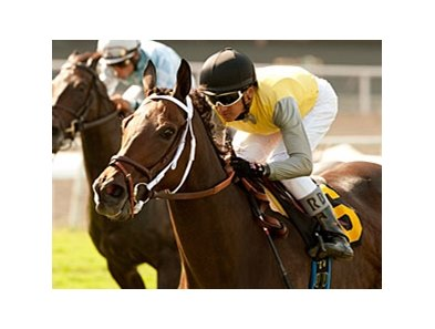 "Celtic Princess wins the Royal Heroine.<br><a target=""blank"" href=""http://www.bloodhorse.com/horse-racing/photo-store?ref=http%3A%2F%2Fpictopia.com%2Fperl%2Fgal%3Fprovider_id%3D368%26ptp_photo_id%3D9586388%26ref%3Dstory"">Order This Photo</a>"