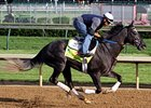 McPeek Plans to Start Frac Daddy in Belmont