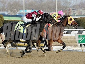 Lion D N A wins the 2014 Correction Stakes.