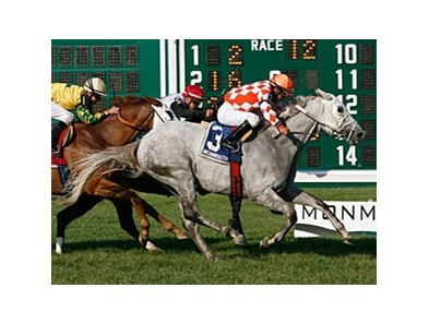 Tune Me In wins the Oceanport Stakes.