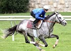 Turallure worked five furlongs on the Keeneland grass in 1:01 4/5 on Oct. 13.
