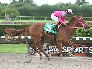 Joanie's Catch wins the 2009 Brave Raj.