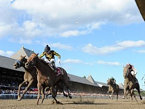 Dance to Bristol wins the 2013 Ballerina.
