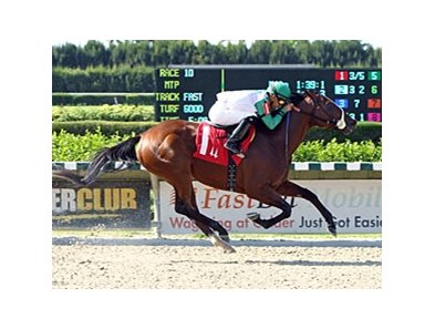 Csaba has won 8 stakes races, including the Memorial Handicap on May 25.