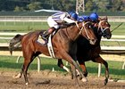 "My Miss Aurelia (left) outfinishes Questing to win the Cotillion Stakes. <br><a target=""blank"" href=""http://photos.bloodhorse.com/AtTheRaces-1/at-the-races-2012/22274956_jFd5jM#!i=2103714693&k=NP7qLxB"">Order This Photo</a>"