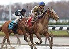 "Salutos Amigos takes the Fall Highweight Handicap in the slop at Aqueduct.<br><a target=""blank"" href=""http://photos.bloodhorse.com/AtTheRaces-1/At-the-Races-2014/i-mm4Ps6j"">Order This Photo</a>"