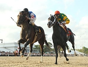 Big Truck (left) takes the Tampa Bay Derby over Atoned. War Pass is not in the picture.