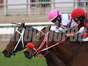 Sunday's Child wins the 2012 Sarah Lane's Oates Stakes.