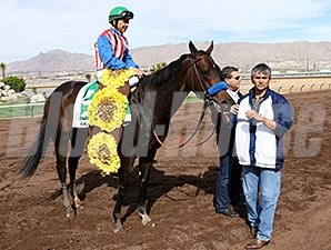 Awesome Baby wins the Sunland Park Oaks.