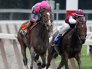 Icon Project wins the 2009 New York Stakes.