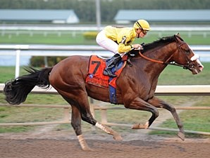 Union Rags wins the 2012 Fountain of Youth Stakes.