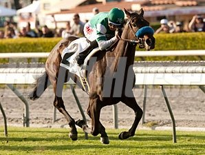 Lady of Shamrock wins the 2012 China Doll.