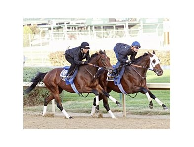 Hurricane Ike (right) worked six furlongs at Churchill Downs in 1:12 2/5.