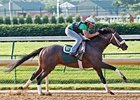 Oxbow worked 6 furlongs in 1:14 3/5.