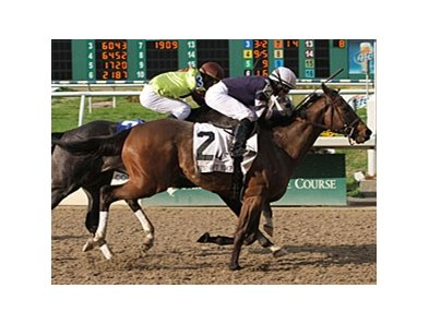 "Demarcation gets up late to win the Mineshaft.<br><a target=""blank"" href=""http://www.bloodhorse.com/horse-racing/photo-store?ref=http%3A%2F%2Fpictopia.com%2Fperl%2Fgal%3Fprovider_id%3D368%26ptp_photo_id%3D9412829%26ref%3Dstory"">Order This Photo</a>"