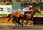 "Killer Graces won the Landaluce on July 17.<br><a target=""blank"" href=""http://www.bloodhorse.com/horse-racing/photo-store?ref=http%3A%2F%2Fpictopia.com%2Fperl%2Fgal%3Fprovider_id%3D368%26ptp_photo_id%3D9599591%26ref%3Dstory"">Order This Photo</a>"