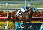 "Gottcha Gold is back to defend his title in the Philip H. Iselin Breeders' Cup Stakes.<br><a target=""blank"" href=""http://www.bloodhorse.com/horse-racing/photo-store?ref=http%3A%2F%2Fpictopia.com%2Fperl%2Fgal%3Fprovider_id%3D368%26ptp_photo_id%3D3879918%26ref%3Dstory"">Order This Photo</a>"