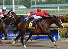 "Indiano comes home strong to win the Mr. Prospector Stakes.<br><a target=""blank"" href=""http://photos.bloodhorse.com/AtTheRaces-1/at-the-races-2012/22274956_jFd5jM#!i=2295071516&k=r7JvLGH"">Order This Photo</a>"