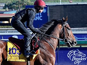 Declaration of War prepares for Breeders' Cup at Santa Anita on 10/31/2013.