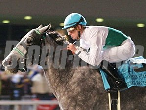 Informed Decision wins the 2009 Presque Isle Downs Masters Stakes.