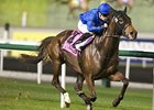 Sajjhaa dominates the Cape Verdi at Meydan.