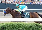 Bodemeister Sent to Kentucky for Evaluation