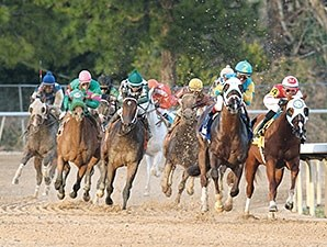 Far Right wins the Smarty Jones Stakes.