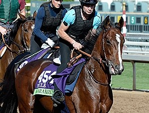 Karakontie preps for the 2014 Breeders' Cup.