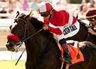 Acclamation is one of the finalists for the 2011 California-bred Horse of the Year.