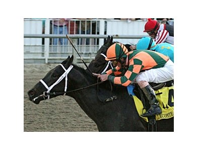 "Mr. Bowling holds off Z Dager to take the Lecomte Stakes at Fair Grounds.<br><a target=""blank"" href=""http://www.bloodhorse.com/horse-racing/photo-store?ref=http%3A%2F%2Fpictopia.com%2Fperl%2Fgal%3Fprovider_id%3D368%26ptp_photo_id%3D9802309%26ref%3Dstory"">Order This Photo</a>"