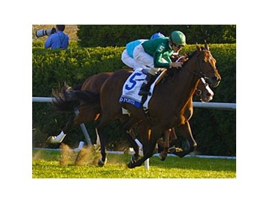 Gio Ponti winning the 2011 Shadwell Turf Mile.