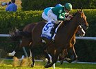 Shadwell Turf Mile Purse Hiked to $750,000