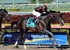 Cigar Street wins grade III Skip Away Stakes in 2013