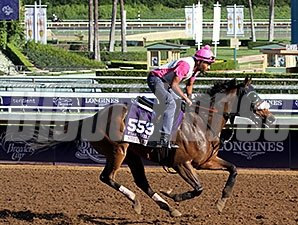 Sweet Reason - Breeders' Cup 2014