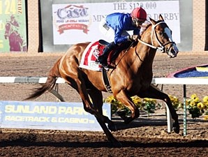 Dry Summer wins the 2013 Mine That Bird Derby.