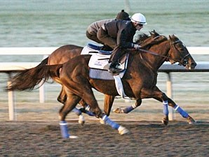 Rogue Romance (outside) and Harlan's Ruby work together at Keeneland on October 30, 2010.