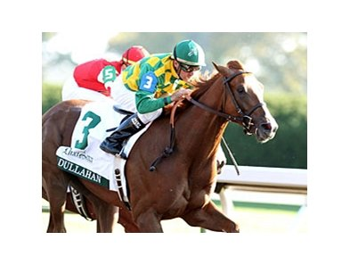 Dullahan makes his first 2012 start in the Palm Beach Stakes.