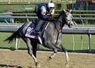 "Ready to Act <br><a target=""blank"" href=""http://photos.bloodhorse.com/BreedersCup/2013-Breeders-Cup/Breeders-Cup/32986083_QMHXWK#!i=2872159686&k=jWXFhTS"">Order This Photo</a>"