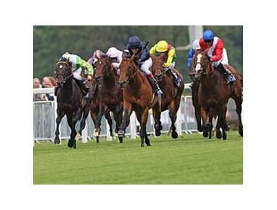 "Duke of Marmalade (navy silks) captured the Prince of Wales (ENG-I) by four lengths at Royal Ascot on June 18. <br><a target=""blank"" href=""http://www.bloodhorse.com/horse-racing/photo-store?ref=http%3A%2F%2Fpictopia.com%2Fperl%2Fgal%3Fprovider_id%3D368%26ptp_photo_id%3D4875670%0D%0A%26ref%3Dstory"">Order This Photo</a>"
