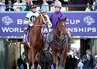 "Will Take Charge<br><a target=""blank"" href=""http://photos.bloodhorse.com/BreedersCup/2013-Breeders-Cup/Classic/33150031_7ZnLk4#!i=2883094363&k=hD8RtNX"">Order This Photo</a>"