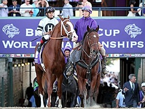Will Take Charge before the 2013 Breeders' Cup Classic.