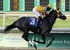 "Mylute<br><a target=""blank"" href=""http://photos.bloodhorse.com/AtTheRaces-1/at-the-races-2012/22274956_jFd5jM#!i=2438024868&k=wqdWcnS"">Order This Photo</a>"