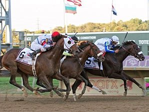 Morning Line Takes on Six in Salvator Mile