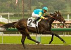 "Pioneerof the Nile and Garrett Gomez take the San Felipe.<br><a target=""blank"" href=""http://www.bloodhorse.com/horse-racing/photo-store?ref=http%3A%2F%2Fpictopia.com%2Fperl%2Fgal%3Fprovider_id%3D368%26ptp_photo_id%3D7901454%26ref%3Dstory"">Order This Photo</a>"