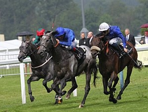 Colour Vision wins the 2012 Ascot Gold Cup.