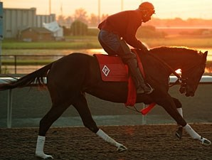 Marketing Mix - Woodbine May 31, 2011