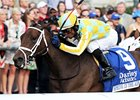 Spring in the Air takes on nine in the Chilukki Stakes Nov. 1 at Churchill Downs.