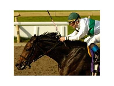 Van Lear Rose scored at 9-1 odds in the Mazarine Stakes (Can-III).