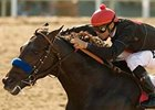 Lazaro Barrera Memorial winner Two Step Salsa tries two turns for the first time in the Affirmed Handicap.